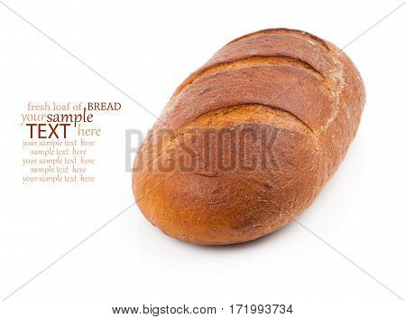 whole loaf of bread on white background