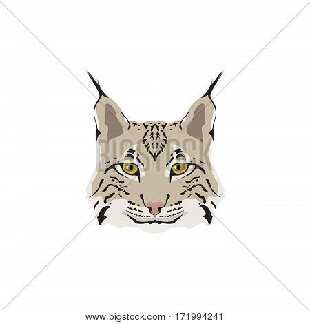 Head of lynx isolated on white background. Mascot logo. Vector illustration.