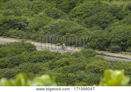 biking in green nature rain forest brazil