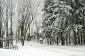 Snowbound winter forest with elements of wooden decoration - shed and twig fence. Skansen Shevchenkivskyi Hai, Lviv Ukraine. poster