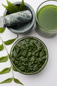 Medicinal Ayurvedic Azadirachta indica or Neem leaves in mortar and pestle with neem paste, juice and twigs, powder and oil, selective focus poster