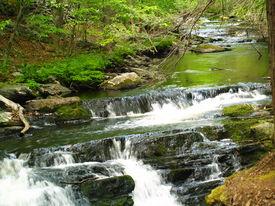 Bushkill Waterfalls ,Pa