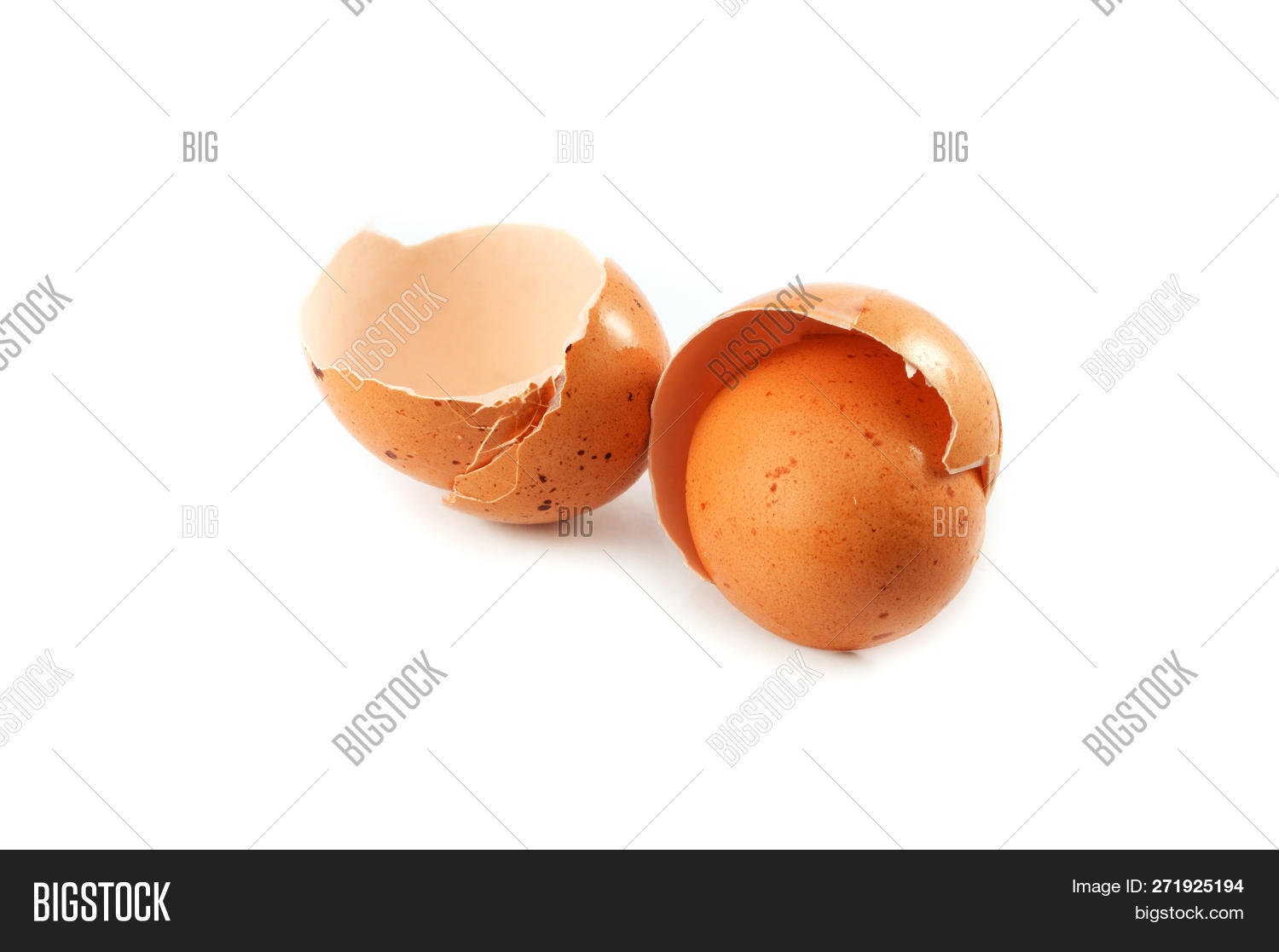 Egg Shell Isolated Image Photo Free Trial Bigstock
