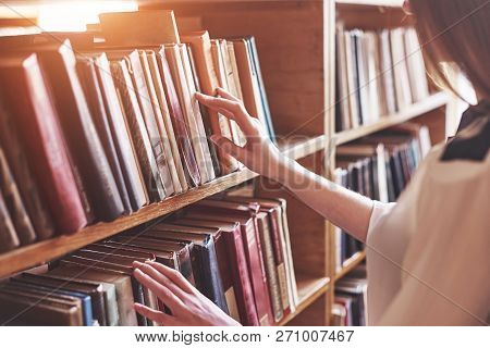 Young Attractive Student Librarian Reading A Book Between Library Bookshelves.