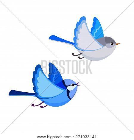 Vector Illustration Of Cartoon Flying Splendid Fairy Wren Pair Isolated On White Background