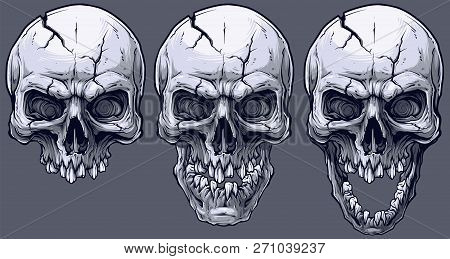 Detailed Graphic Realistic Cool Black And White Human Skulls With Crack And Broken Teeth. On Gray Ba