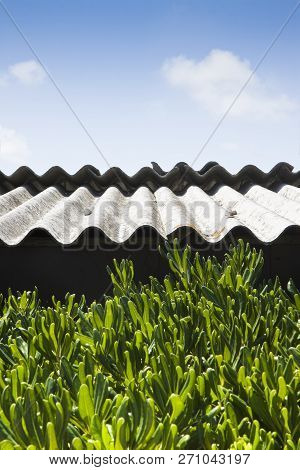 Old Aged Dangerous Asbestos Roof - One Of The Most Dangerous Materials In Buildings So-called