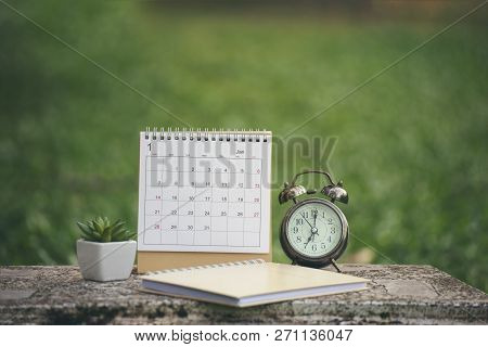 Desktop Calendar 2019 Place On Office Desk.calender And Notebook For Planner, Timetable,agenda,appoi