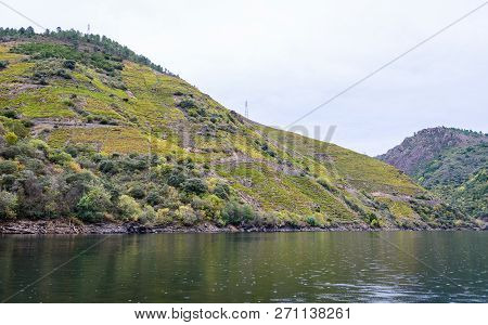 Boat View Of Canyon, Valley And Vineyards Along River Sil.