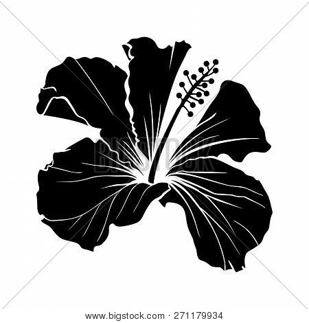 Hawaiian Hibiscus Laser Cut Vector Silhouette. Fragrance Flower. Mallow Chenese Rose. Black And Whit