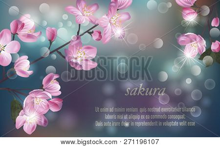 Template For Invitation, Sales, Packaging, Cosmetics, Perfume. Vector Banner With Cherry Blossom. Bl