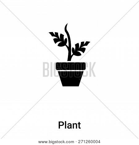 Plant Icon In Trendy Design Style. Plant Icon Isolated On White Background. Plant Vector Icon Simple