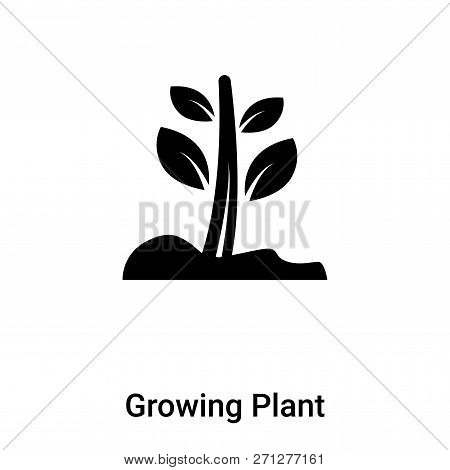 Growing Plant Icon In Trendy Design Style. Growing Plant Icon Isolated On White Background. Growing