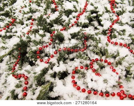 The Texture Of Many Conifer Tree Branches Covered With Snow And Red Beads. Bead Heart In The Corner.
