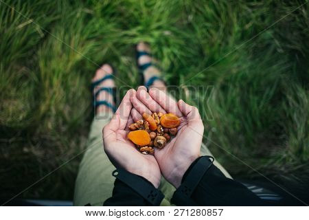 Traveler Holds Dry Fruits And Nuts In Palm Of Hand