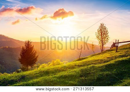 Green Wonderland At Purple Sunset. Gorgeous Countryside In Mountains Under The Beautiful Sky. Wooden
