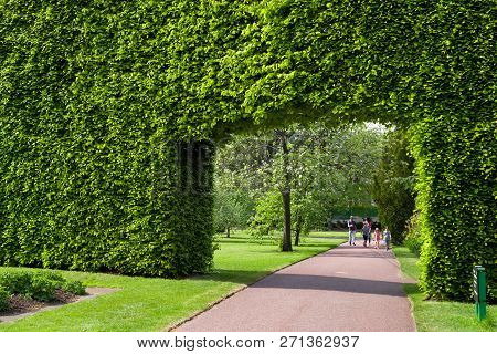 Edinburgh, Scotland - May 19: Hedgerow In Royal Botanic Garden On May 19, 2018 In Edinburgh