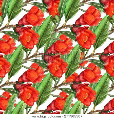 Seamless Pattern With Watercolor Images Of Flowers Of Pomegranate