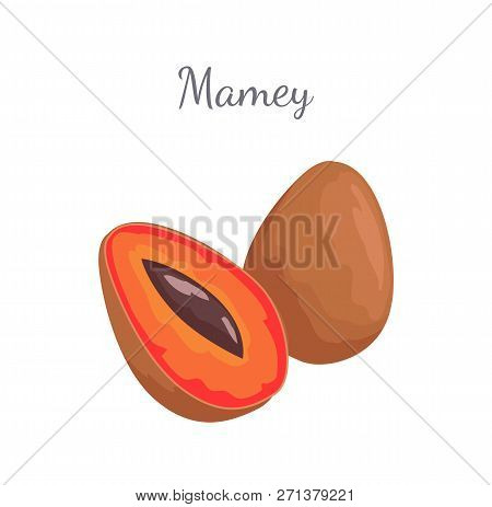 Mamey Exotic Juicy Fruit Vector Whole And Cut Isolated Icons. Edible Food, Dieting Vegetarian Mammea