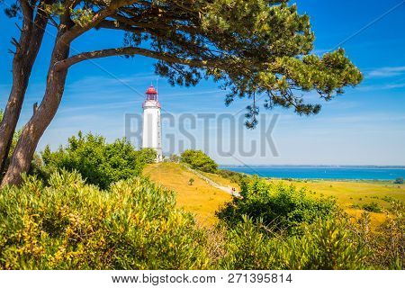 Classic View Of Famous Lighthouse Dornbusch On The Beautiful Island Hiddensee With Blooming Flowers