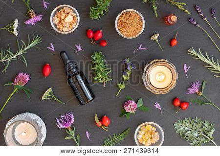 Bottles Of Essential Oil With Frankincense, Hyssop, Mountain Savory And Other Herbs On A Dark Backgr