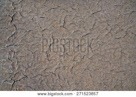 Cracks In The Asphalt On A Street