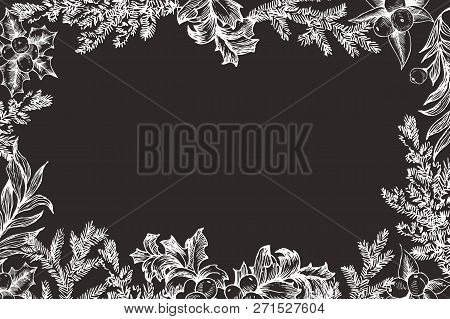 Vector Christmas Frame With Conifers Illustration On Chalkboard. Vintage Invitation Or Greeting Card