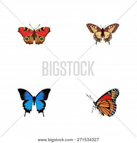 Set Of Moth Realistic Symbols With Painted Lady, Polyommatus Icarus, Precis Almana And Other Icons F