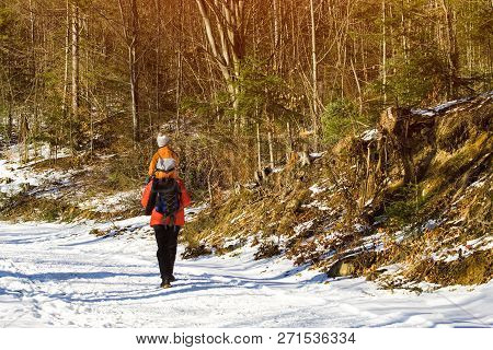 Man With Son On Shoulders Walking Along The Road In A Snowy Forest. Winter. Day