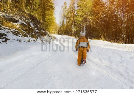 Little Boy In An Orange Jumpsuit Walking On Snow-covered Road In A Coniferous Forest. Winter Sunny D