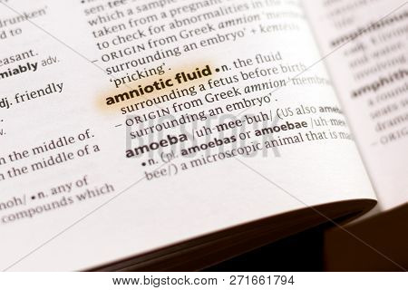 The Word Or Phrase Amniotic Fluid In A Dictionary Highlighted With Marker.