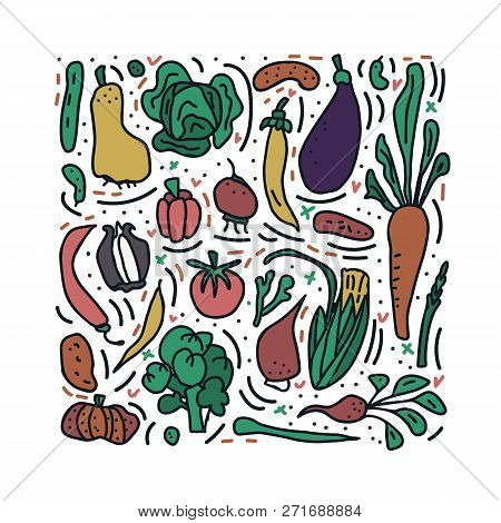 Set Of Vector Vegetables. Collection Of Veg In Doodle Style Isolated On White Background. Square Com