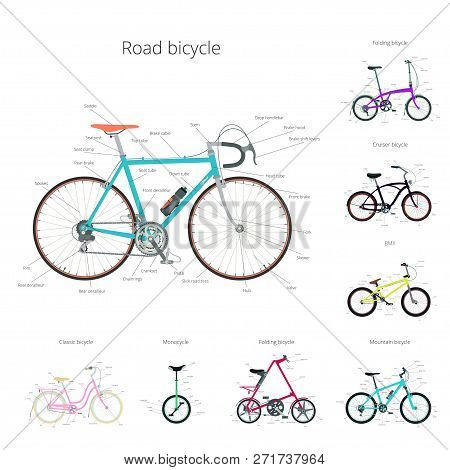Types Of Bicycle With Text: Road Bicycle, Bmx, Tandem, Monocycle, Cruiser.