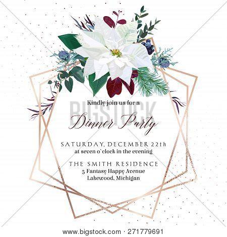Christmas White Poinsettia, Parvifolia Eucalyptus, Fir, Agonis, Juniper Vector Design Winter Frame.p