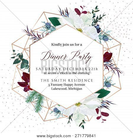 Christmas White Poinsettia, Parvifolia Eucalyptus, Fir, Agonis, Juniper Vector Design Winter Frame.g