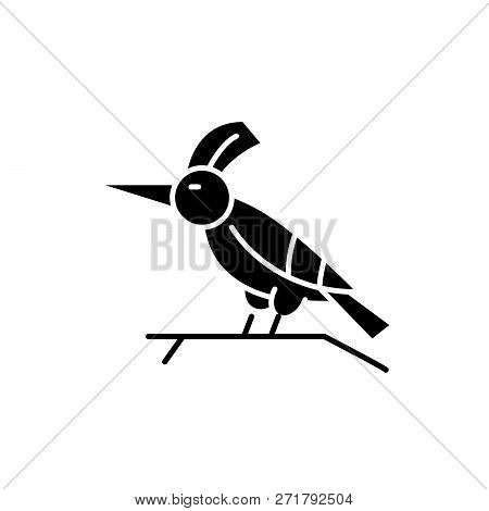 Woodpecker Black Icon, Vector Sign On Isolated Background. Woodpecker Concept Symbol, Illustration
