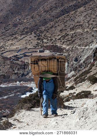 Dingboche, Nepal - January 13, 2017: Nepalese Porter Carrying A Heavy Load To The Pass In Sagarmatha