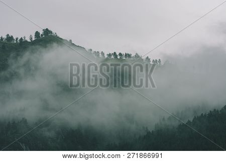 Thick Fog In Mountains With Copy Space On Mist. Vintage Foggy Landscape Of Majestic Nature In Faded