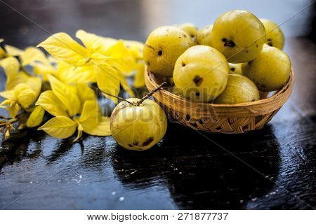 Close Up Of Organic Raw Indian Gooseberry Or Amla Or Ribes Uva-crispa In A Vegetable And Fruit Baske
