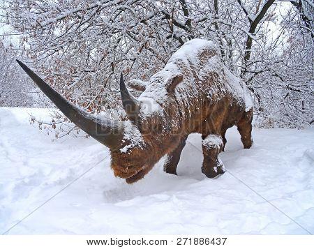 Woolly Rhinoceros representative of the Pleistocene (Ice Age) - woolly rhinoceros. poster