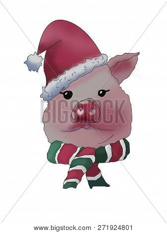Pork Head In A Christmas Hat And A Striped Scarf. Sketch. Raster Illustration. Symbol Of 2019.