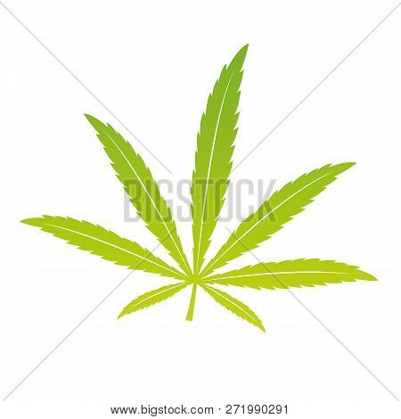 Green Cannabis Leaf Isoladet On White Background Vector Illustration Eps10