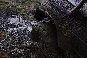 Fragment of car stuck in dirt, close up. Wheel in deep puddle of mud overcomes obstacles. Offroad tire covered with mud on nature background. Reduced gear concept. poster