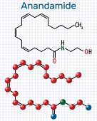 Anandamide molecule. It is endogenous cannabinoid neurotransmitter. Structural chemical formula and molecule model. Sheet of paper in a cage. Vector illustration poster
