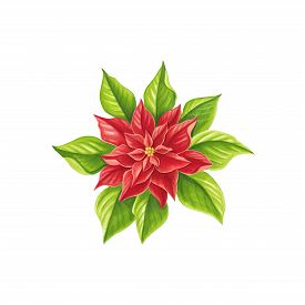 Christmas Star Painted Markers On White Background. You Can Use For Greeting Cards, Posters And Desi