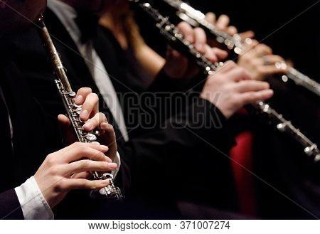 Flauto E Clarinetto Durante Concerto Musica Classica