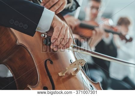 Cello Player's Hands Close Up