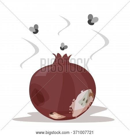 Rotten Pomegranate Vector Isolated. Poisonous Fruit, Food