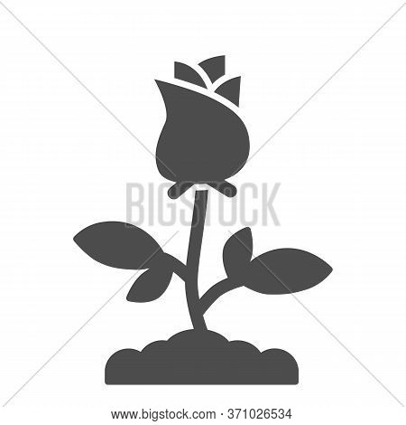 Rose Solid Icon, Floral Concept, Rose Blossom With Leaves Sign On White Background, Single Rose Flow