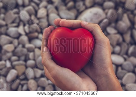 Red Heart In Childrens Hands On Stone Beach Background, Concept Of Love. Symbol Of Love And Family.v